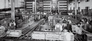 Las plantas que empezaron la historia cervecera en México